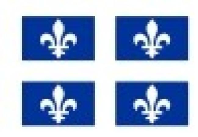Offensive de transformation numérique : 130 M$ dans les douze prochains mois - Lancement d'une grande offensive de transformation numérique des entreprises de toutes les régions du Québec